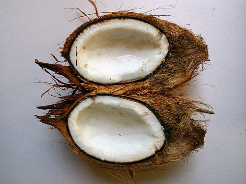 Fresh Coconut Halves