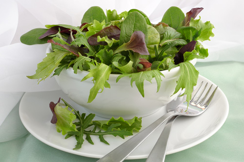 Variety of Lettuces in a Bowl