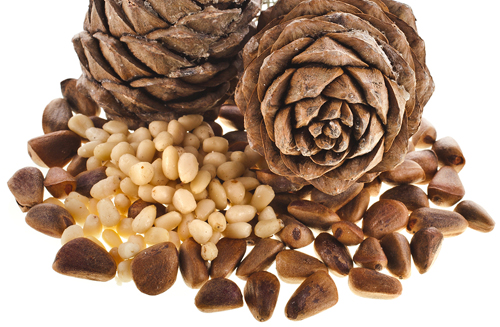 Pine Nuts Shelled and Unshelled